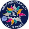 Anglia youth award brooch with ship in the center